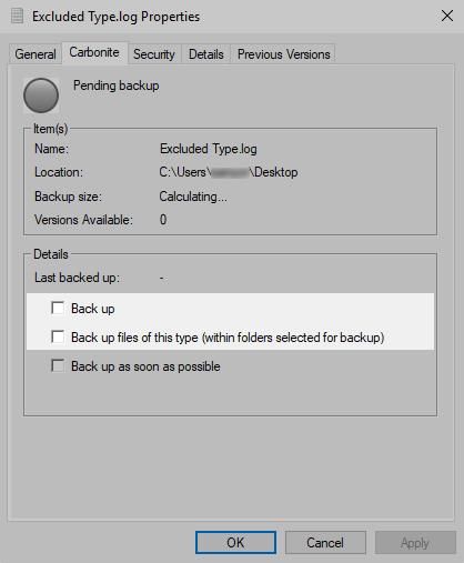 File Properties Window: Carbonite tab