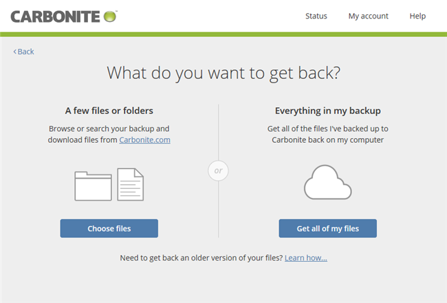 Carbonite application: Restore Options
