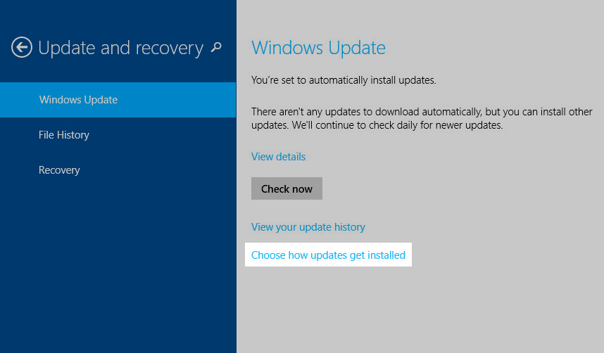 Windows 8 update: Choose how updates get installed
