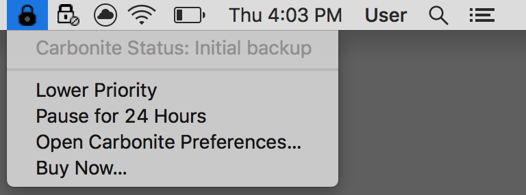 macOS Status Bar: Click the Carbonite padlock icon and select Open Carbonite Preferences