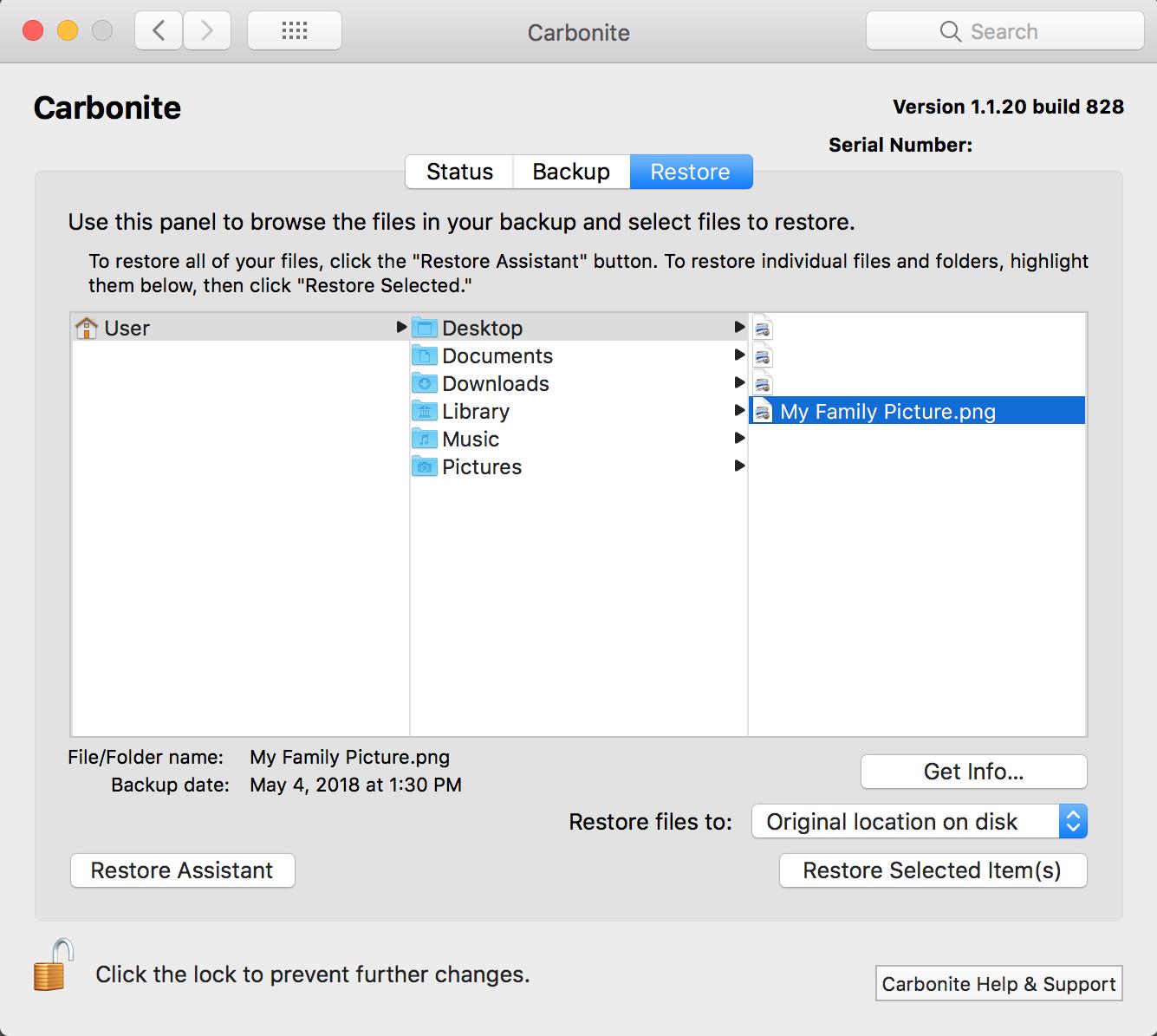 Carbonite Mac 1.x Client: Selected file