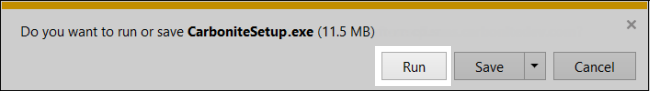 Internet Explorer: Do you want to run or save CarboniteSetup.exe
